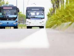 海河教育园区智能网联公交常态化开放运行线路落成:智能网联公交 喊你来体验