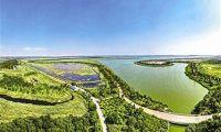 """官港双城绿化项目大片""""城市绿肺""""建设中"""