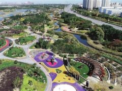 天津港保税区临港湿地公园二期对外开放