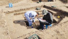天津西青区发现明清墓葬800余座