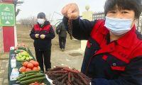 """发展高质量""""津农津品"""" 今年天津菜篮子自给率达30%"""