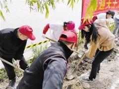 北辰区青年志愿者开展环境清整行动:播种绿色健康 共筑美好生活