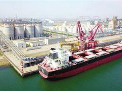天津临港经济区粮油物流中心一期筒仓二阶段总承包项目投用